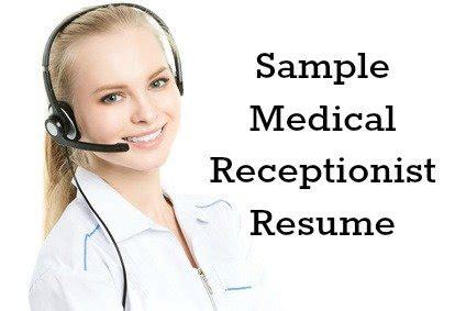 Resume server job description 513500